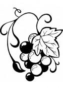 Almaden Valley Art & Wine Festival Logo