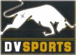 Logo: DV SPORTS