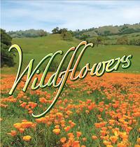 Wildflower trail Almaden